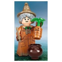 90015 - 71028 Profesor Pomona Sprout