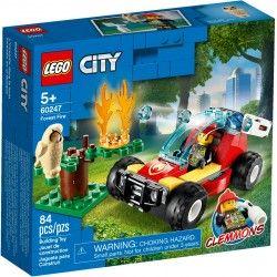 60247 Pożar lasu