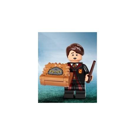 90016 - 71028 Neville Longbottom